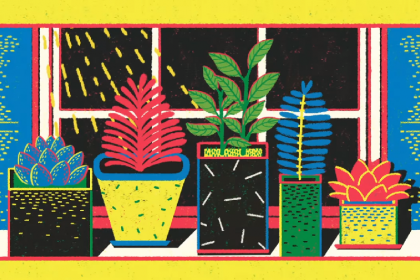 An Animated Lesson of Plant Communication