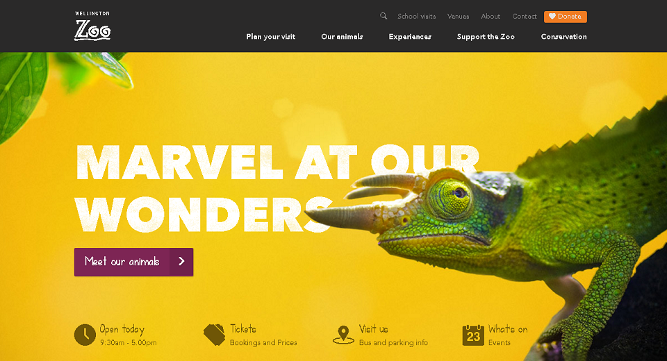 Websites with Large Background Images