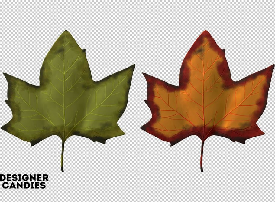 autumn-fall-leaf-preview-3-